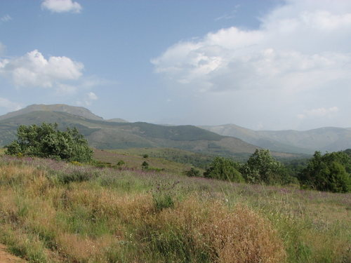 The Gredos Foothills