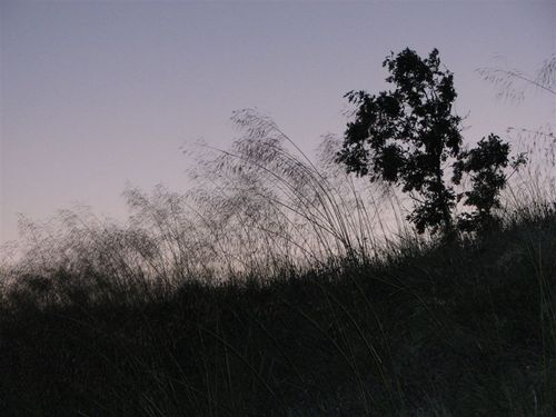 Dusk over Gredos